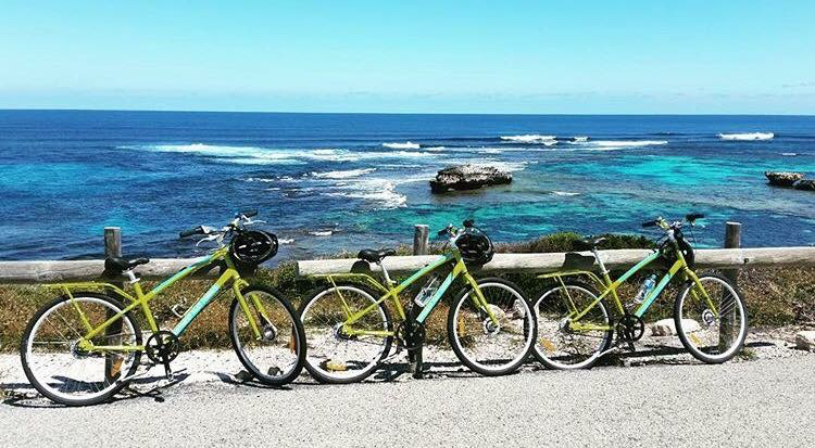 three rottnest fast ferries bikes lined up near the beach